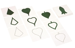Botany Leaf Cards for Premium Leaf Cabinet