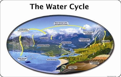 Montessori Materials: Water Cycle Poster