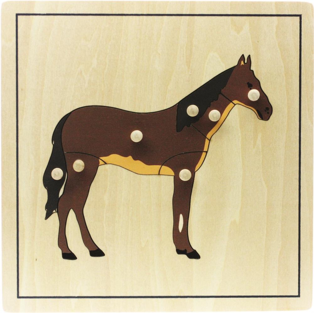 Montessori Materials: Parts of a Horse Puzzle