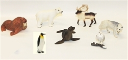 Polar Region Animals