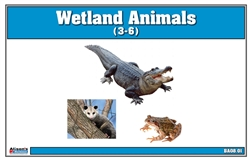 Wetlands Animals Nomenclature Cards (Printed)