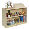 2 Shelf Storage Cabinet with Back