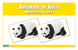 Animals of Asia Matching Cards