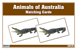 Animals of Australia Matching Cards
