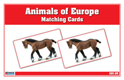 Animals of Europe Matching Cards