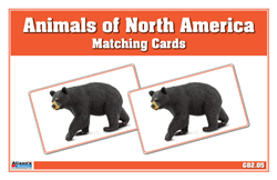 Animals of North America Matching Cards