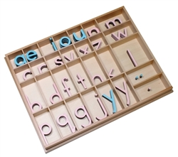 Large Movable Alphabets: Print (Pink and Light Blue)