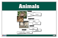 Language and Reading Cards: Animals
