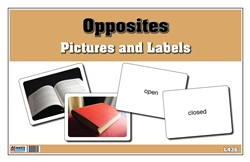 Opposites Pictures and Labels