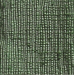 Decanomial Rug (Soft Green)