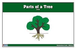 Parts of a Tree Puzzle Nomenclature Cards (3-6)