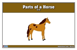Parts of a Horse Puzzle Nomenclature Cards (6-9)
