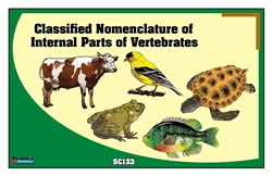 Classified Nomenclature of Internal Parts of Vertebrates