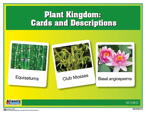 Montessori Materials Plant Kingdom Chart
