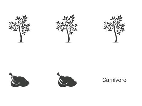 Montessori Materials: Animal Classification Cards: eating