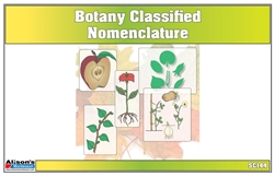 Lower Elementary Classified Botany Nomenclature