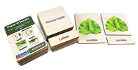 Types of Leaves Nomenclature Cards: Wooden