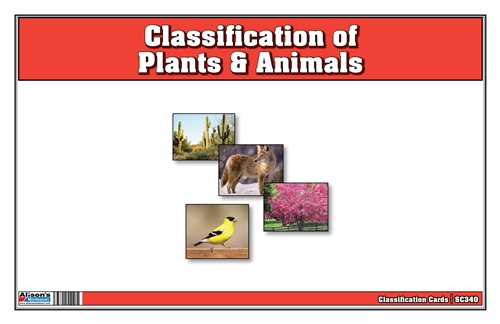 Classification of Plants & Animals Nomenclature Cards