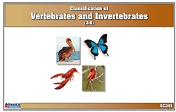 Classification of Vertebrates & Invertebrates Nomenclature Cards