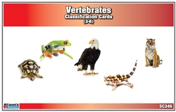 Vertebrates Classification Nomenclature Cards