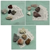Rock Collection With Igneous, Metamorphic, and Sedimentary Rocks