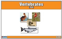 Montessori Materials-Vertebrates Nomenclature Cards