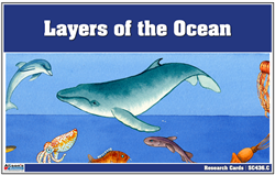 Layers of the Ocean Research Cards