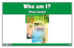 Who am I? (Plant Cards)