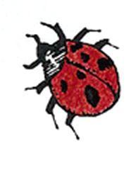 Montessori Materials Ladybug Stamp