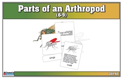 Parts of an Arthropod Puzzle with Nomenclature Cards (6-9)