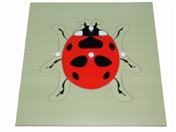 Parts of a Lady Bug Puzzle