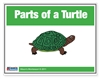 Parts of the Turtle Control Booklet