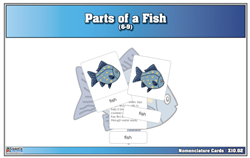 Parts of a Fish Nomenclature Cards (6-9) Printed