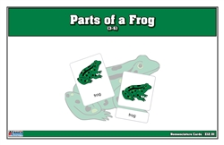 Parts of a Frog Puzzle with Nomenclature Cards (3-6)