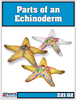 Parts of an Echinioderm (Starfish)- Printed